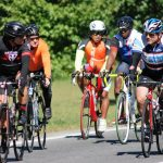 Tour De Bronx Bike Rentals