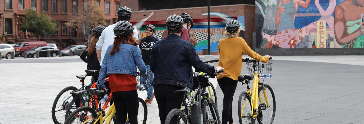 The Sensational Park and Soul Bike Tour - Unlimited Biking